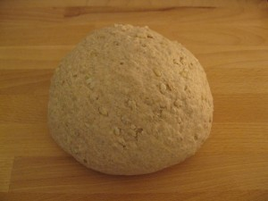 brown rice bread-dough after kneading, before the first rise