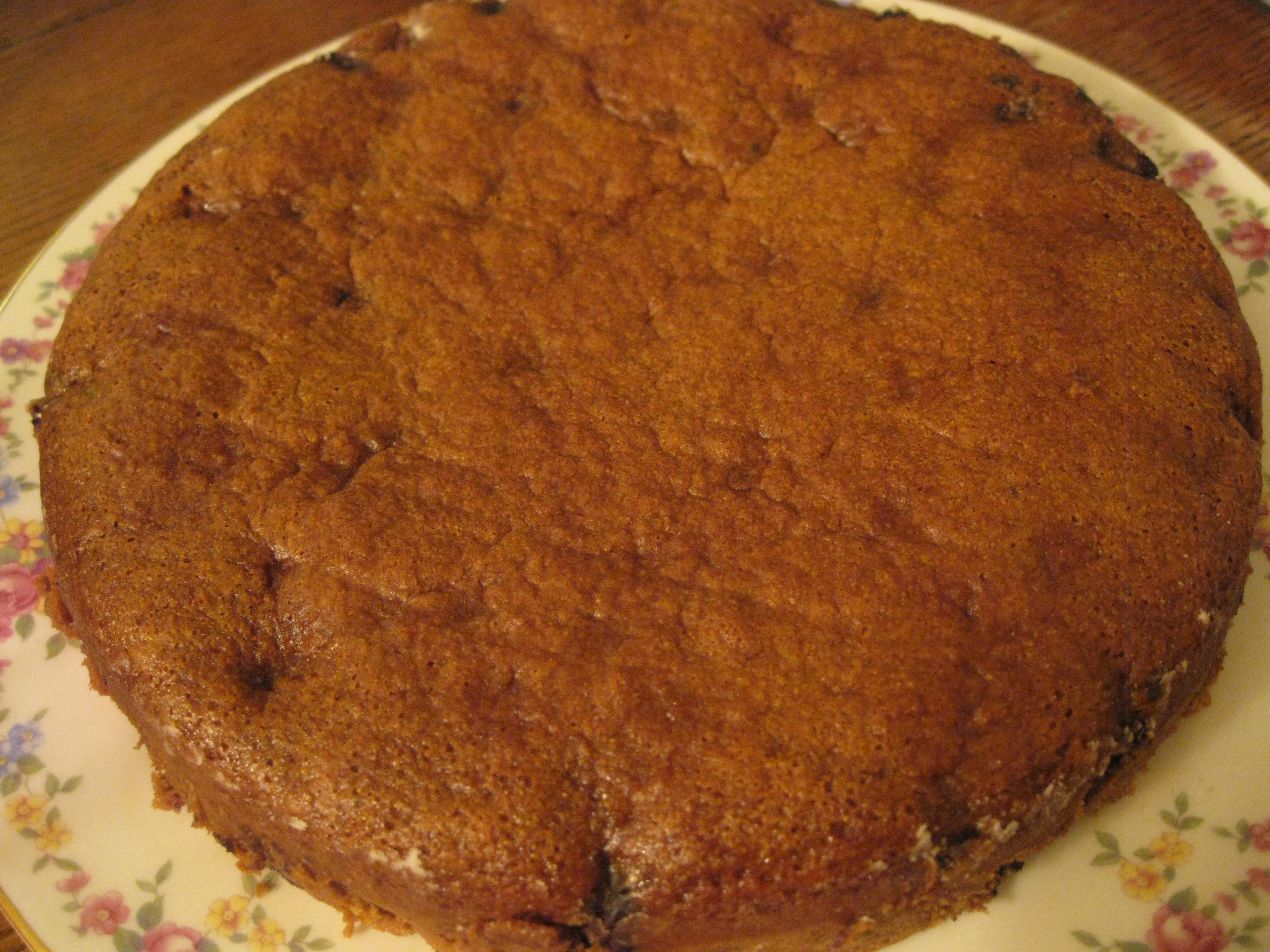 Old-Fashioned Molasses Blueberry Cake – Ari Cooks